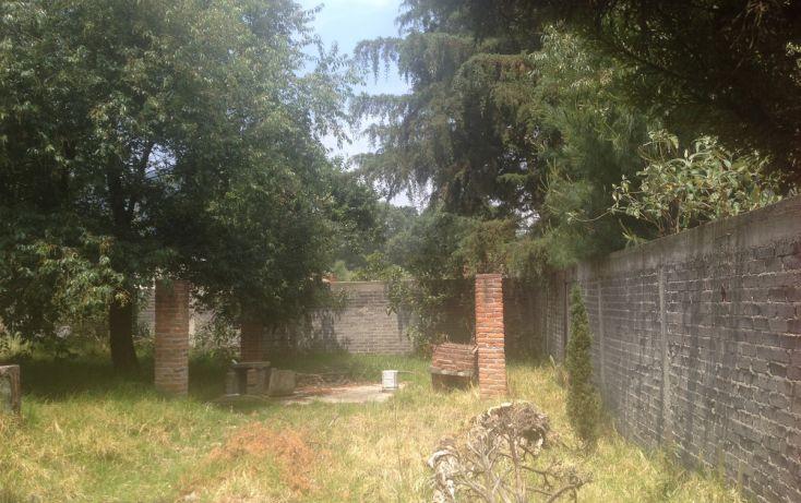 Foto de terreno habitacional en venta en, la esperanza, tlalmanalco, estado de méxico, 1940297 no 07