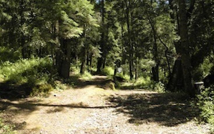 Foto de terreno habitacional en venta en  , la estanzuela, mineral del chico, hidalgo, 1561613 No. 05