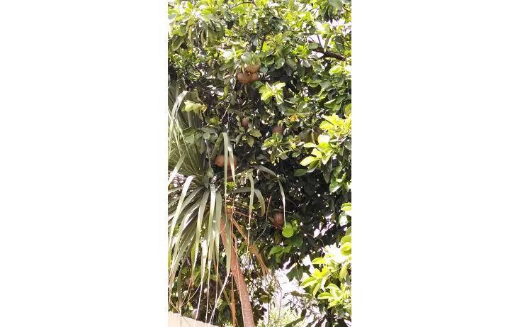 Foto de casa en venta en  , la florida, mérida, yucatán, 598496 No. 08