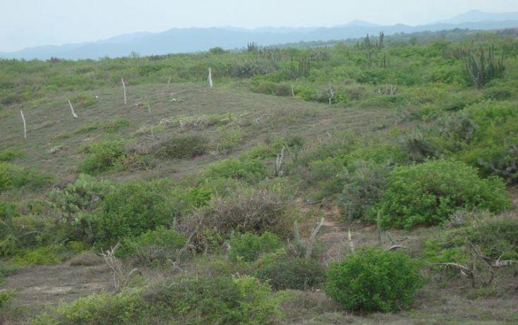 Foto de terreno comercial en venta en la gloria 1, la gloria, tomatlán, jalisco, 1649084 no 14