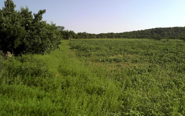 Foto de terreno habitacional en venta en la gloria, apaseo el alto, guanajuato, granja la gloria, apaseo el alto, guanajuato, 1621598 no 03