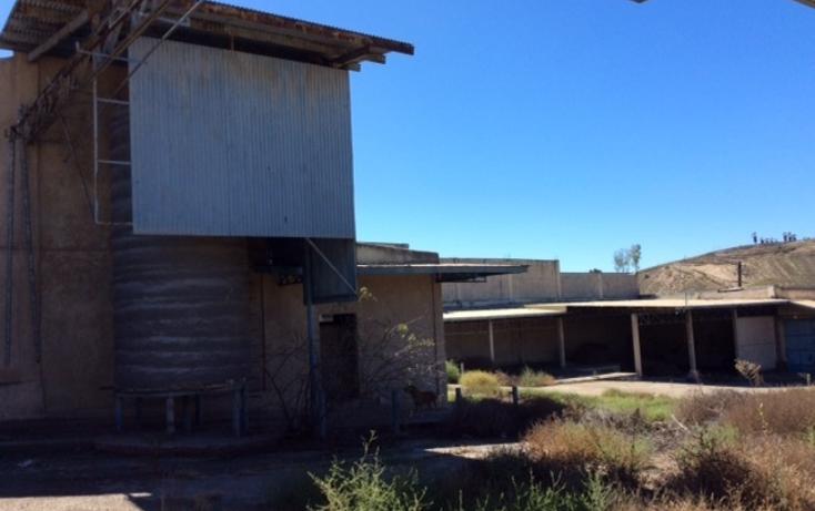 Foto de terreno comercial en venta en  , la gloria, tijuana, baja california, 1444189 No. 05