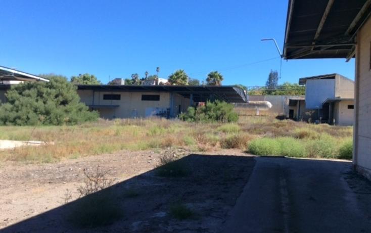 Foto de terreno comercial en venta en  , la gloria, tijuana, baja california, 1444189 No. 08