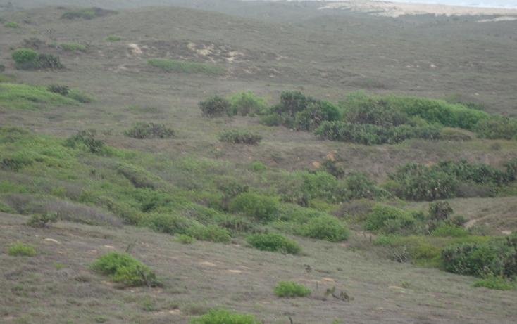 Foto de terreno habitacional en venta en  , la gloria, tomatlán, jalisco, 1598710 No. 10