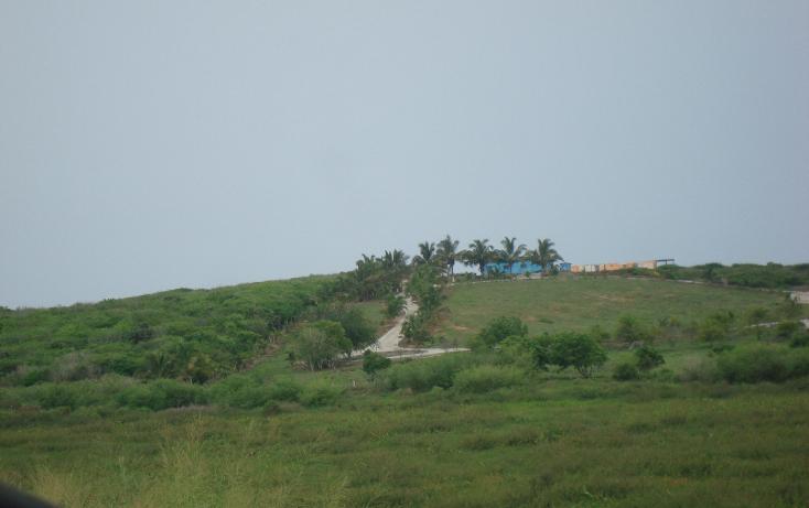 Foto de terreno habitacional en venta en  , la gloria, tomatlán, jalisco, 1646334 No. 02