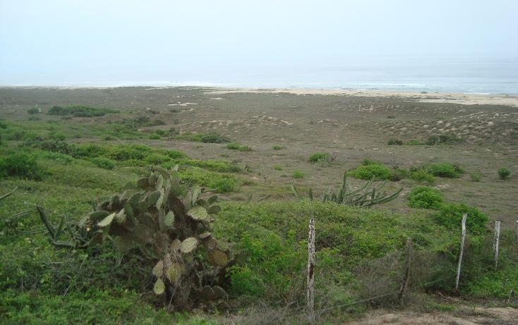 Foto de terreno habitacional en venta en  , la gloria, tomatlán, jalisco, 1646334 No. 04