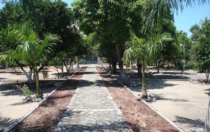 Foto de terreno habitacional en venta en  , la glorieta, amacuzac, morelos, 2685740 No. 14