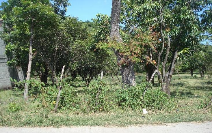 Foto de terreno habitacional en venta en  , la glorieta, amacuzac, morelos, 2685740 No. 35