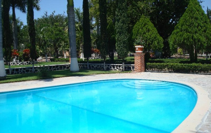 Foto de terreno habitacional en venta en  , la glorieta, amacuzac, morelos, 412880 No. 06