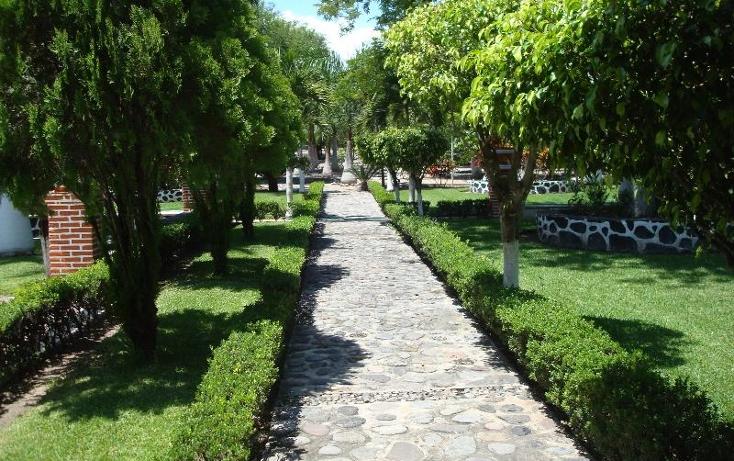 Foto de terreno habitacional en venta en  , la glorieta, amacuzac, morelos, 412880 No. 10