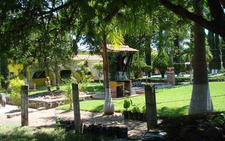 Foto de terreno habitacional en venta en  , la glorieta, amacuzac, morelos, 412880 No. 15