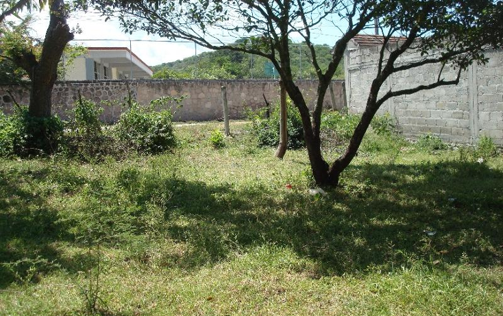 Foto de terreno habitacional en venta en  , la glorieta, amacuzac, morelos, 412880 No. 19