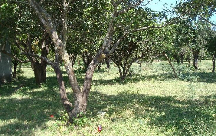 Foto de terreno habitacional en venta en  , la glorieta, amacuzac, morelos, 412880 No. 23