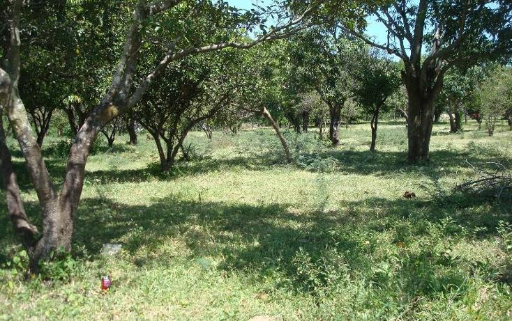 Foto de terreno habitacional en venta en  , la glorieta, amacuzac, morelos, 412880 No. 24
