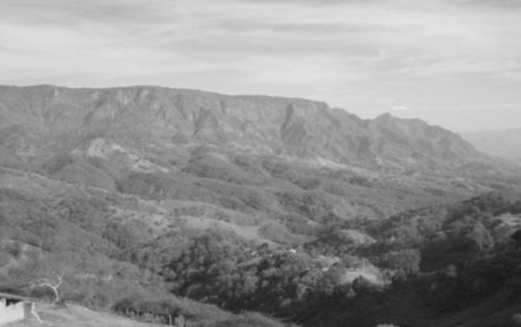 Foto de terreno habitacional en venta en  , la goleta, amatepec, méxico, 1125981 No. 02