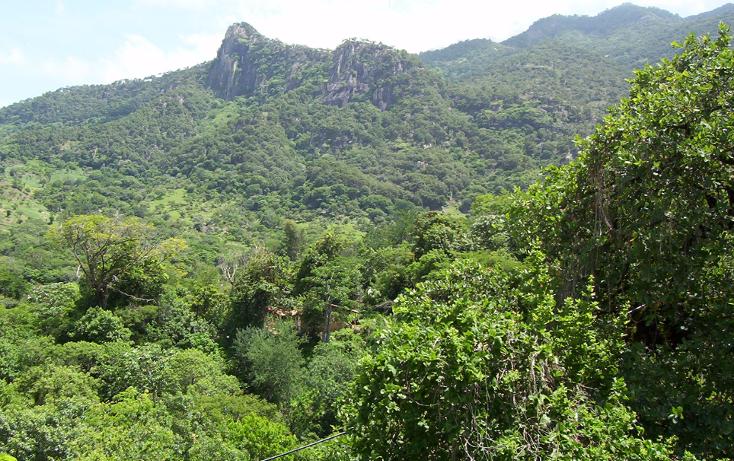 Foto de terreno habitacional en venta en  , la goleta, amatepec, méxico, 1125981 No. 04