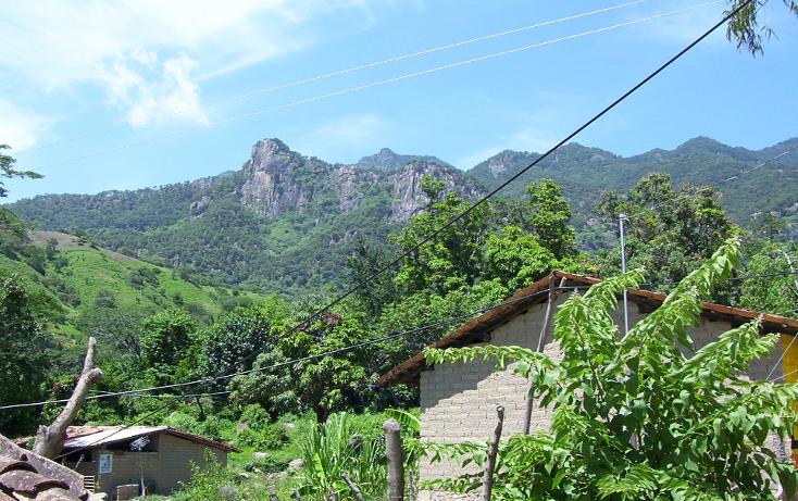 Foto de terreno habitacional en venta en  , la goleta, amatepec, méxico, 1125981 No. 05