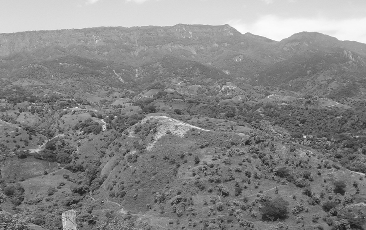 Foto de terreno habitacional en venta en  , la goleta, amatepec, méxico, 1125981 No. 06