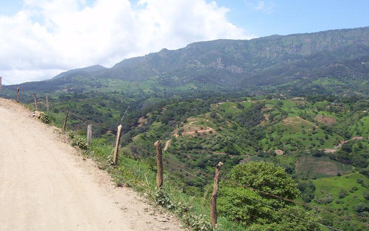 Foto de terreno habitacional en venta en  , la goleta, amatepec, méxico, 1125981 No. 07