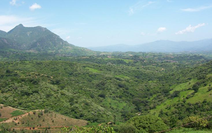 Foto de terreno habitacional en venta en  , la goleta, amatepec, méxico, 1125981 No. 08