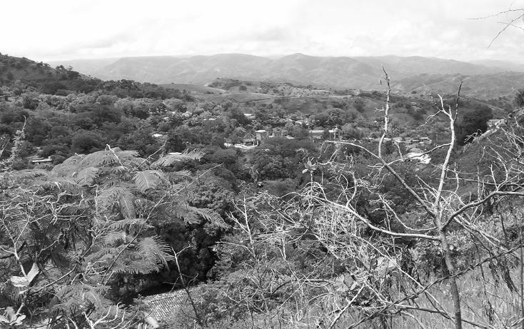 Foto de terreno habitacional en venta en  , la goleta, amatepec, méxico, 1125981 No. 11