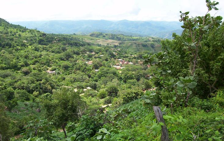 Foto de terreno habitacional en venta en  , la goleta, amatepec, méxico, 1125981 No. 13