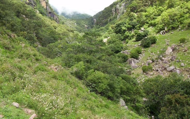 Foto de terreno habitacional en venta en  , la goleta, amatepec, méxico, 1125981 No. 16