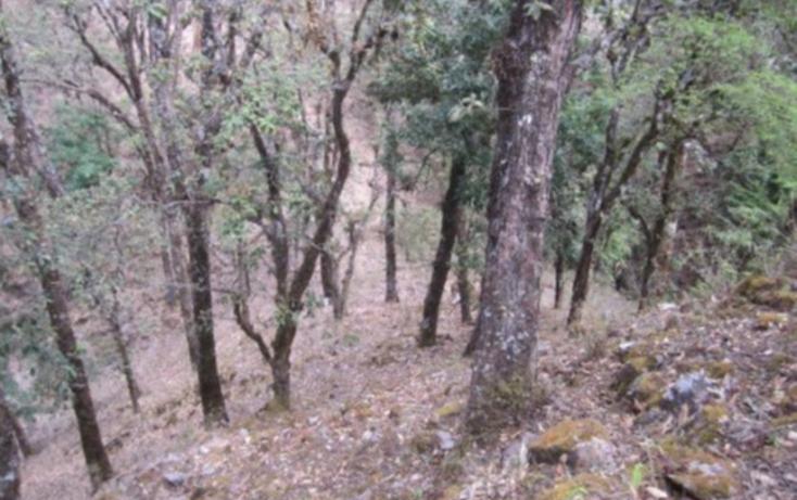 Foto de terreno habitacional en venta en  , la goleta, amatepec, méxico, 1125981 No. 17
