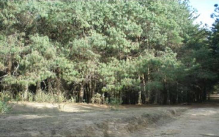 Foto de terreno habitacional en venta en  , la goleta, amatepec, méxico, 1125981 No. 18