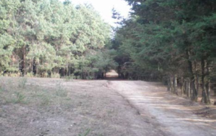 Foto de terreno habitacional en venta en  , la goleta, amatepec, méxico, 1125981 No. 19