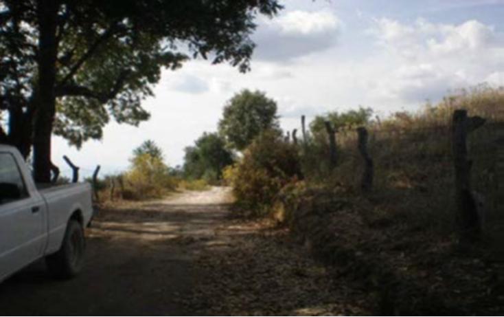 Foto de terreno habitacional en venta en  , la goleta, amatepec, méxico, 1125981 No. 20