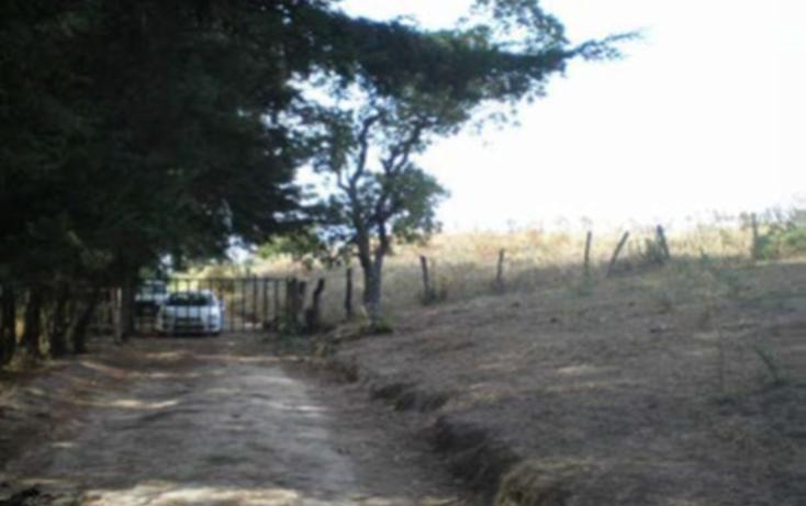Foto de terreno habitacional en venta en  , la goleta, amatepec, méxico, 1125981 No. 21