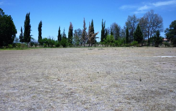 Foto de terreno comercial en renta en  , la guayana, san francisco de los romo, aguascalientes, 1951300 No. 05