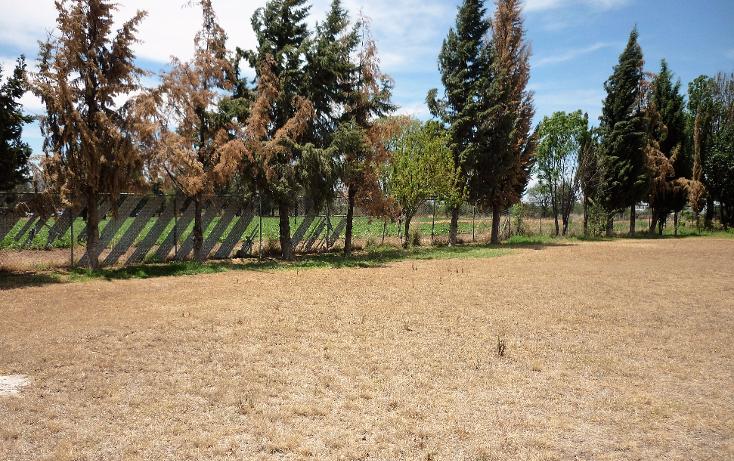 Foto de terreno comercial en renta en  , la guayana, san francisco de los romo, aguascalientes, 1951300 No. 06