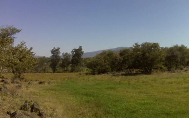 Foto de terreno habitacional en venta en  , juanacatlan, juanacatlán, jalisco, 1715312 No. 08