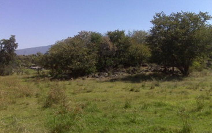 Foto de terreno habitacional en venta en  , juanacatlan, juanacatlán, jalisco, 1715312 No. 10