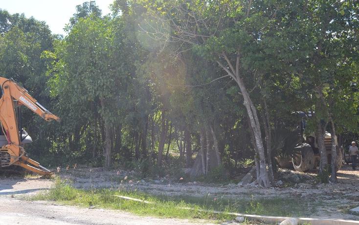 Foto de terreno comercial en venta en  , la joya, solidaridad, quintana roo, 1974820 No. 03