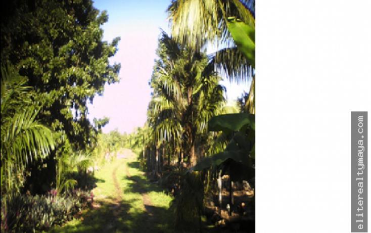 Foto de terreno habitacional en venta en, la laguna, bacalar, quintana roo, 1914946 no 02