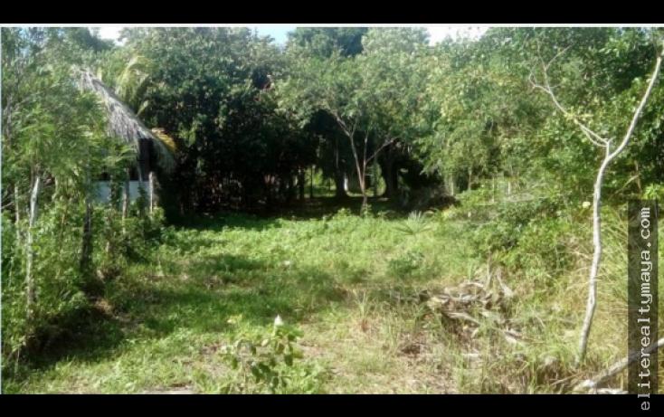 Foto de terreno habitacional en venta en, la laguna, bacalar, quintana roo, 1959475 no 02