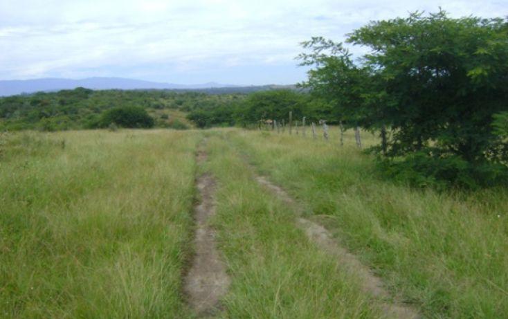 Foto de terreno habitacional en venta en, la laguna, emiliano zapata, veracruz, 1080281 no 03