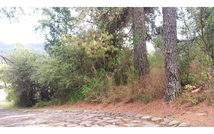 Foto de terreno habitacional en venta en  , la laguna, valle de bravo, méxico, 1481513 No. 03