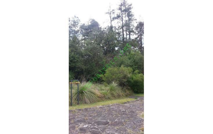 Foto de terreno habitacional en venta en  , la laguna, valle de bravo, méxico, 1481513 No. 04