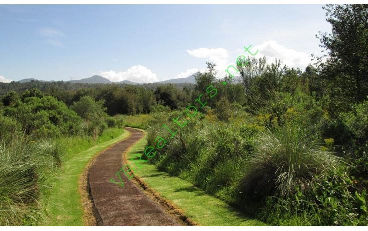 Foto de terreno habitacional en venta en  , la laguna, valle de bravo, méxico, 1490773 No. 09