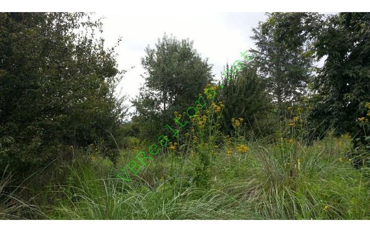 Foto de terreno habitacional en venta en  , la laguna, valle de bravo, méxico, 1490773 No. 13