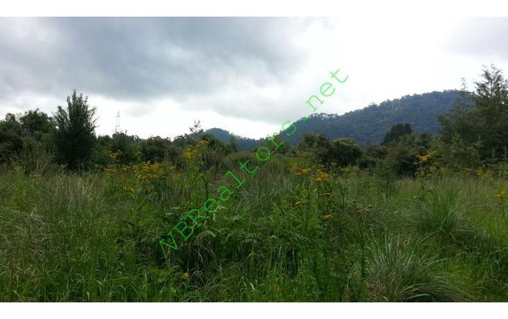 Foto de terreno habitacional en venta en  , la laguna, valle de bravo, méxico, 1490773 No. 16