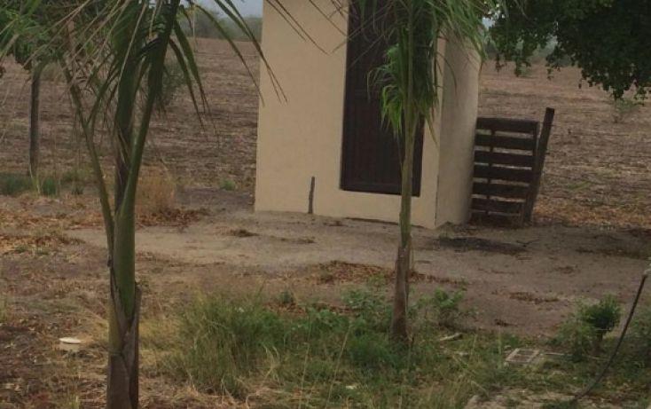 Foto de terreno habitacional en venta en, la lima, culiacán, sinaloa, 1773796 no 05
