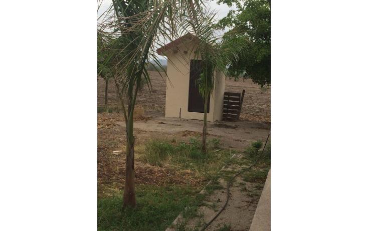 Foto de terreno habitacional en venta en  , la lima, culiac?n, sinaloa, 1773796 No. 05