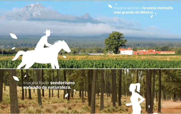 Foto de rancho en venta en  , la lima, huamantla, tlaxcala, 1111509 No. 06