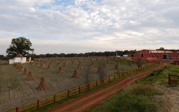 Foto de rancho en venta en  , la lima, huamantla, tlaxcala, 1111509 No. 09