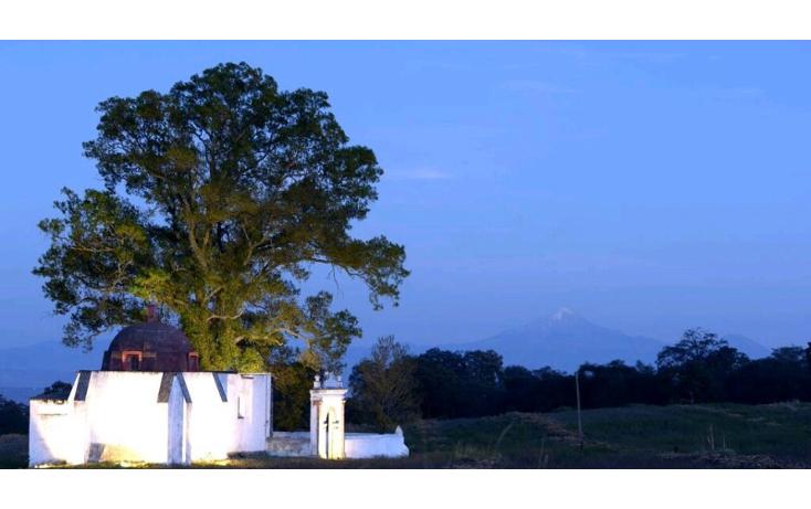 Foto de rancho en venta en  , la lima, huamantla, tlaxcala, 1111509 No. 10